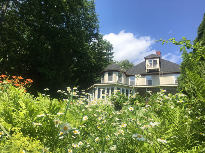 Daisies in front of the inn