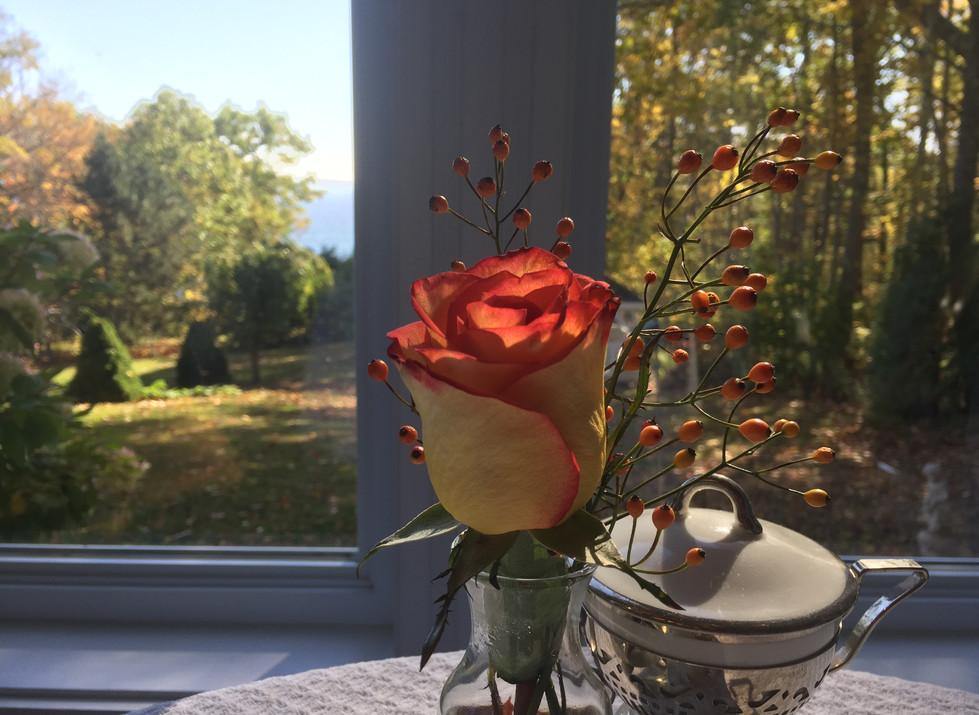 rose in the breakfast room
