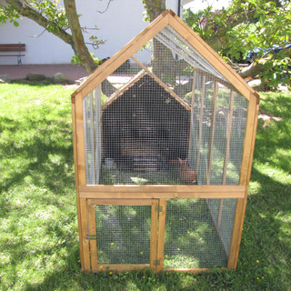 Domek królików