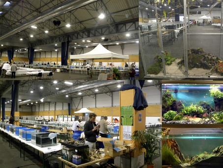 1ère manifestation de loisirs, nature et aquariophilie de Plounéour-Lanvern