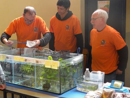 Bourse d'oiseaux et poissons du lycée de Merdrignac