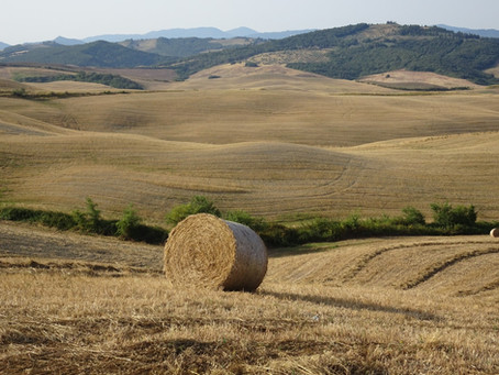 Anello Saline - Volterra