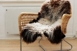 Chair with wild-sheep wool
