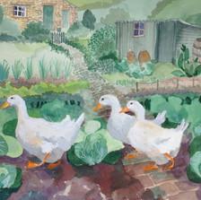 Three Ducks £550