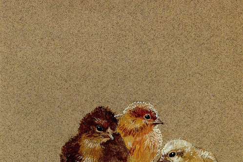 Chicks (Print)