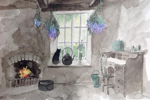My Cornish Garden