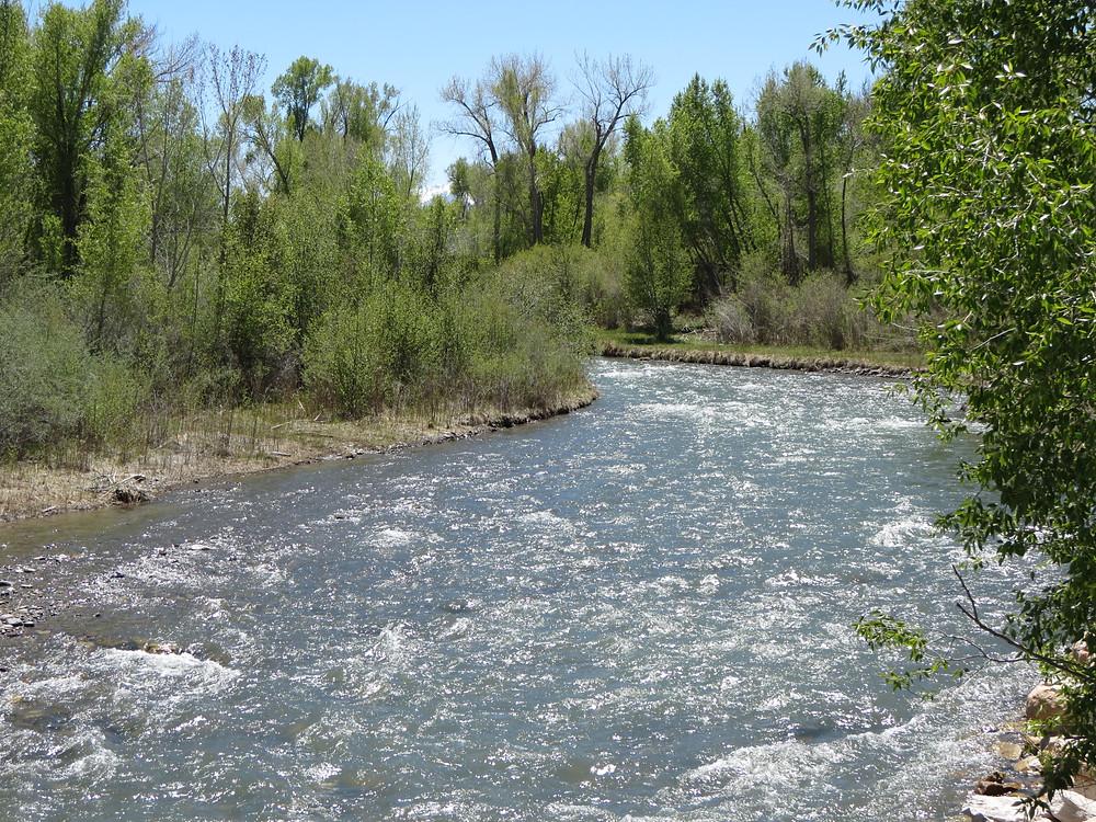 Spring time river in Colorado