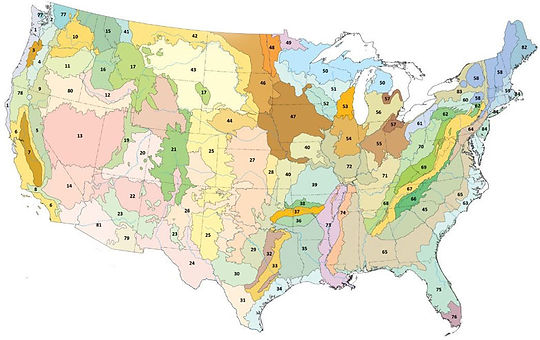 map of ecoregions of US