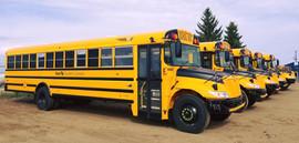 School Bus decal package.jpg