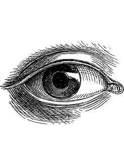 Eye long.jpg
