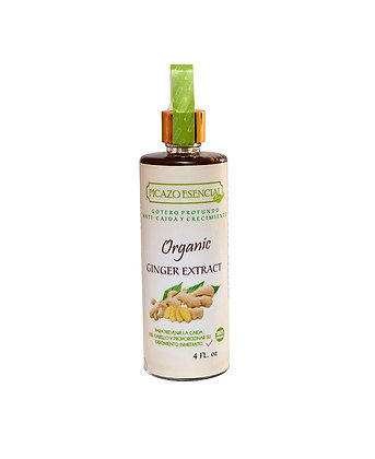 Ginger Extract 4 Oz. / Picazo Esencial