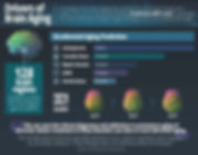 Aging_Brain_Infographic_V6.jpg