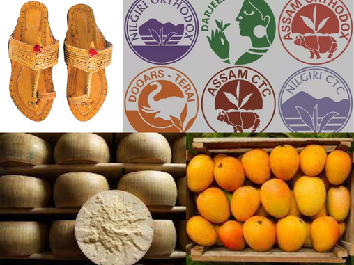 Process of registration for a Geographical Indication