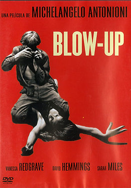 Blow-up  /  Michelangelo Antonioni