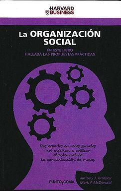 LA ORGANIZACIÓN SOCIAL: CONVERTIR EN RESULTADOS LAS OPORTUNIDADES DE LAS REDES SOCIALES