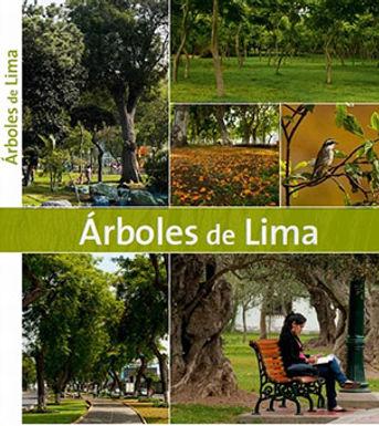 ÁRBOLES DE LIMA