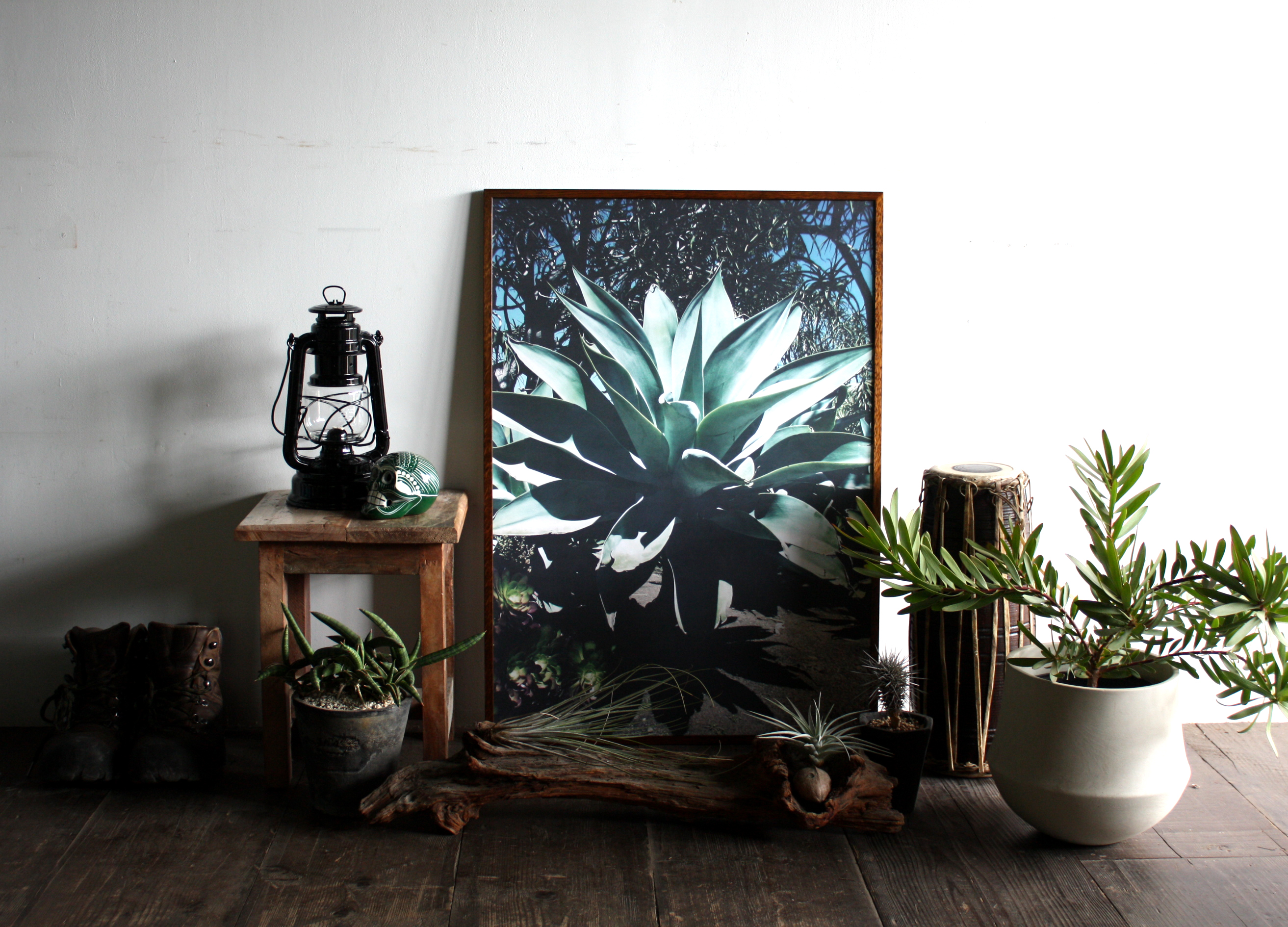 Botanico Art Prints