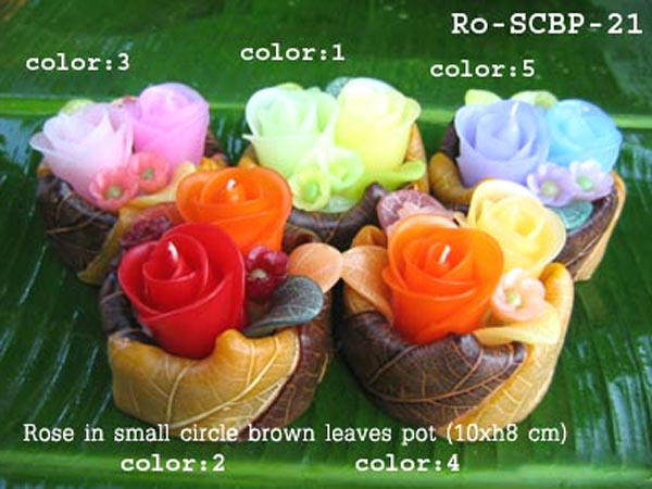 PS-Flower Candle-Ro_SCBP21_color1-5