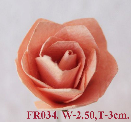 PS-RoseFR034