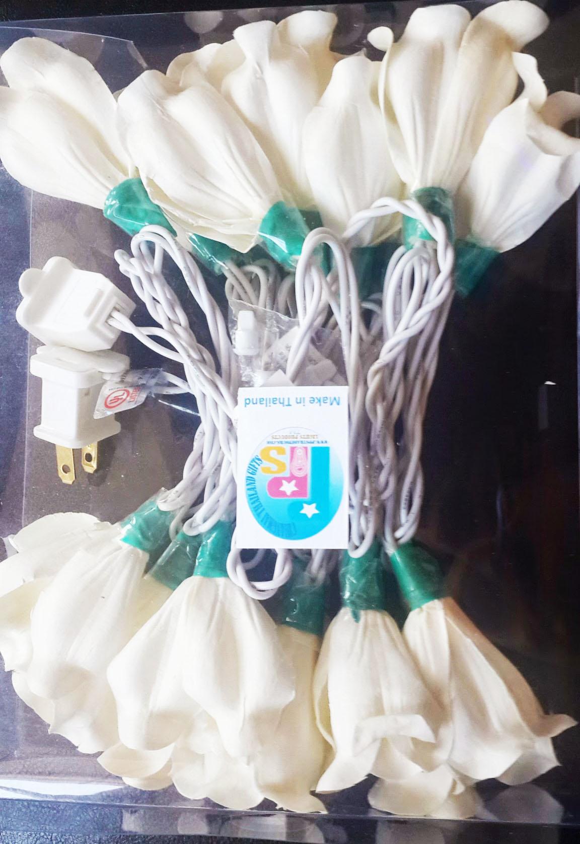 Sola flower string lights