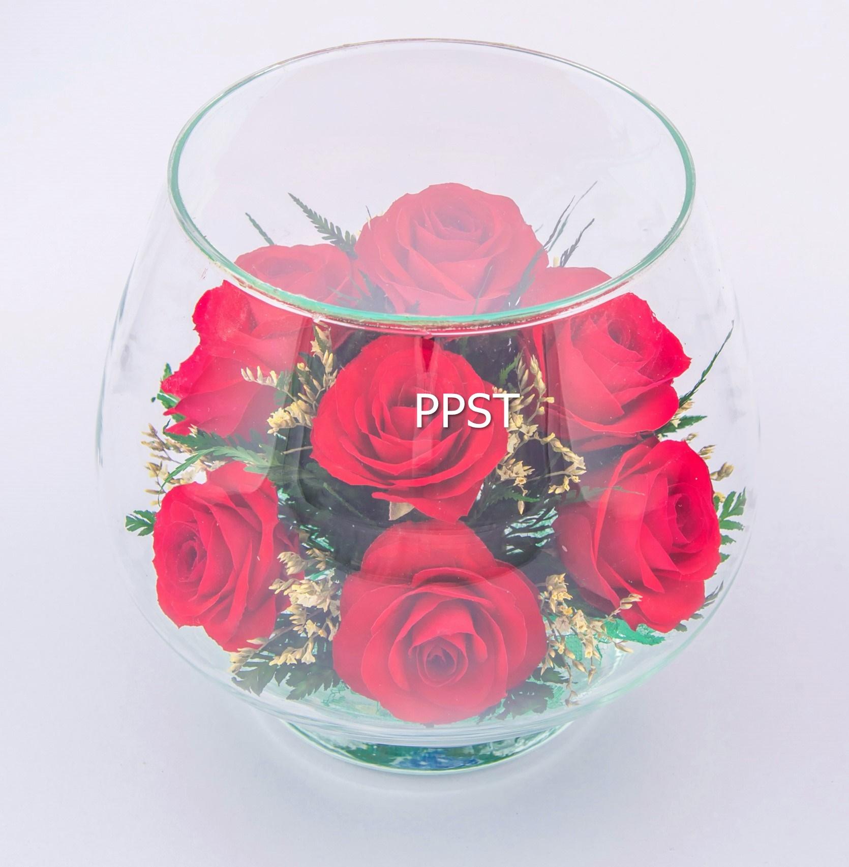 PS-RIG-26