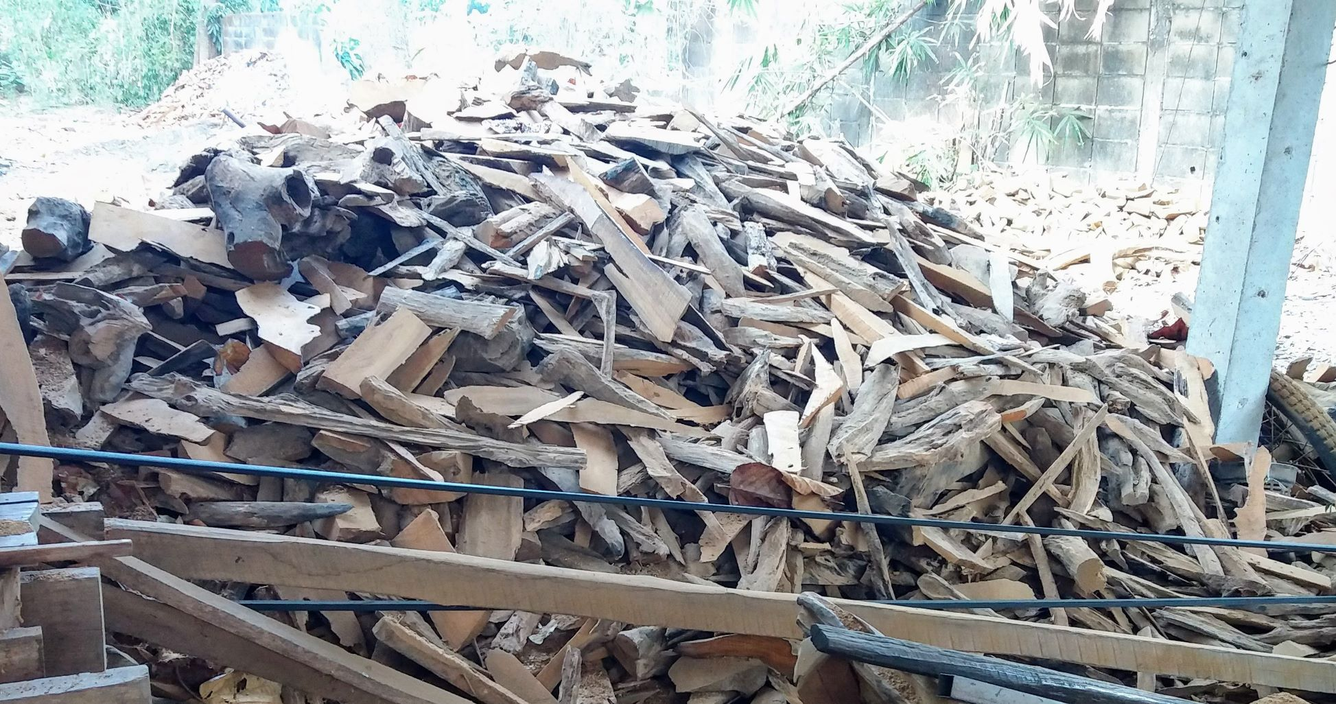 DriftwoodHorse1