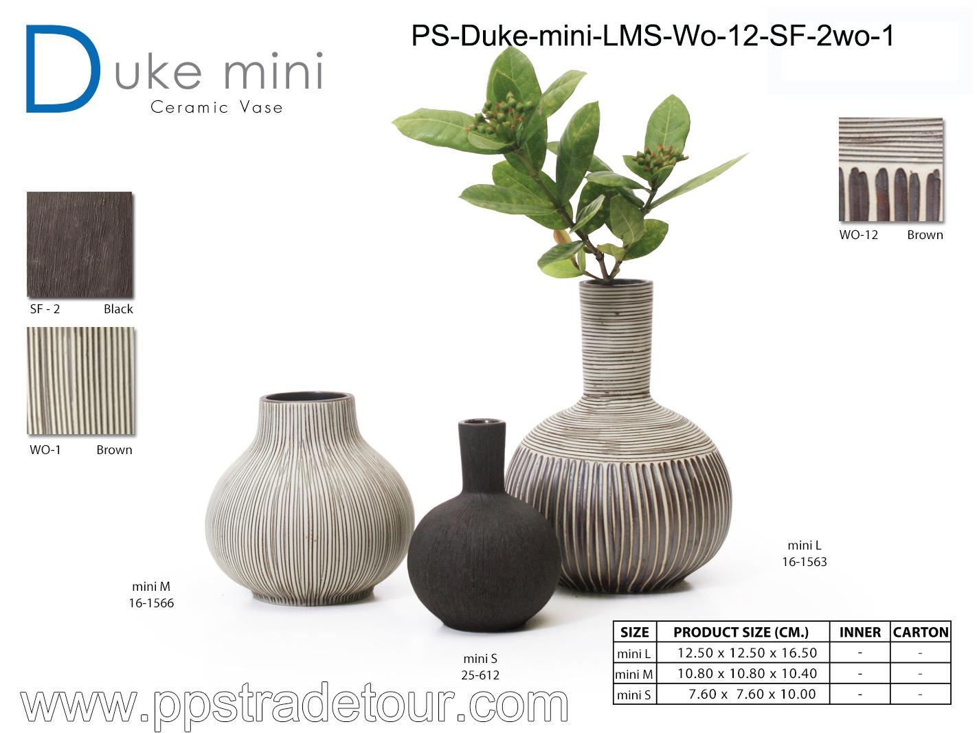 PSCV-Duke-mini-LMS-WO-12-SF-2WO-1
