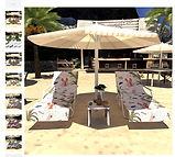 Sunbathingbed.jpg