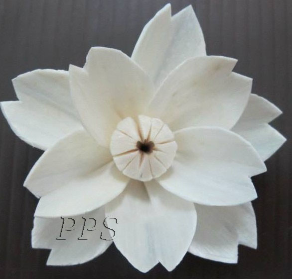 Sola Flower diffuser 143 (25)