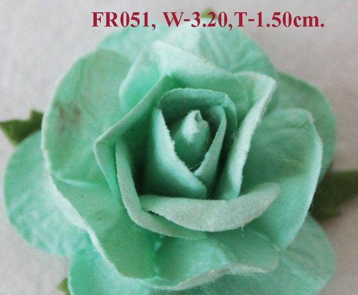 PS-RoseFR051