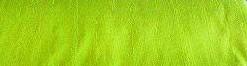 TS-Green-light3