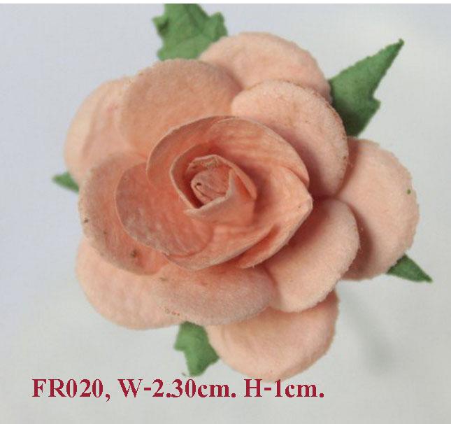 PS-RoseFR020