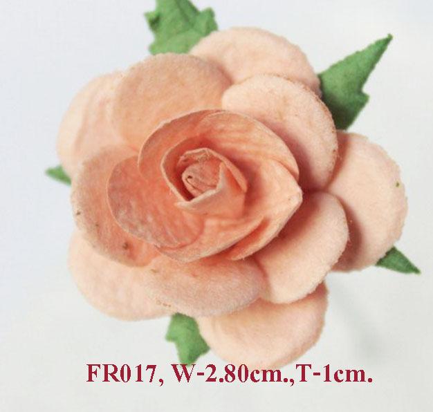 PS-RoseFR017
