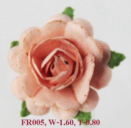 PS-RoseFR005