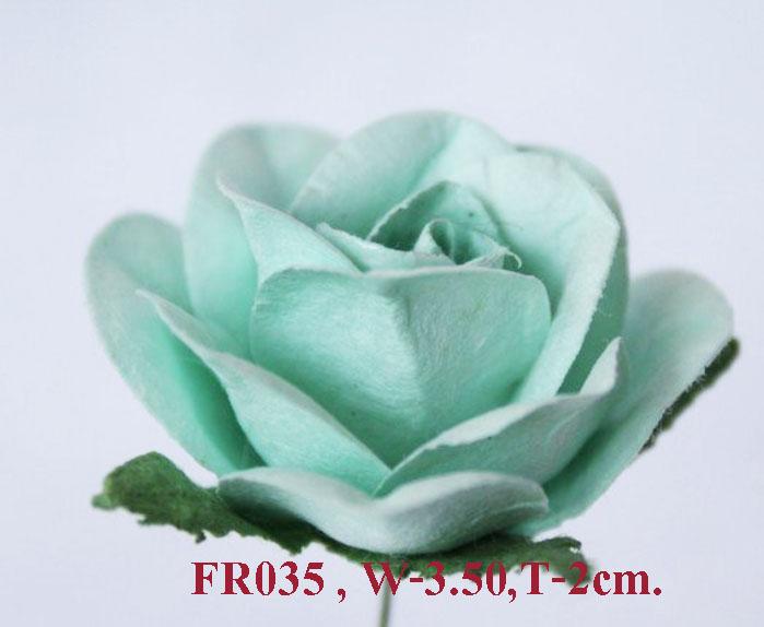 PS-RoseFR035
