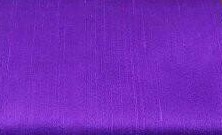 TS-Purple