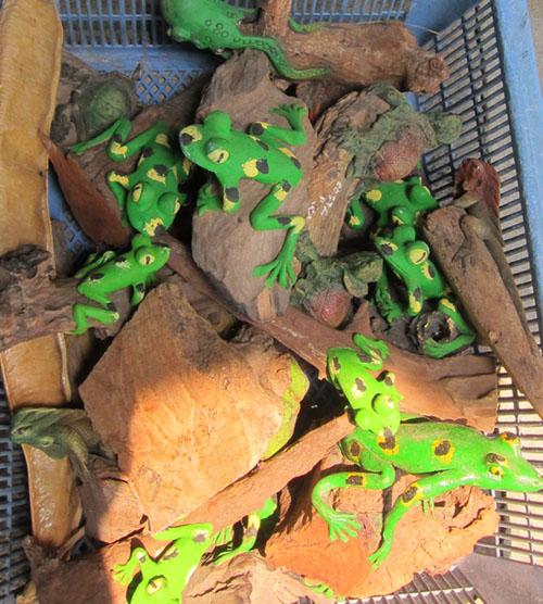 Frog Sawdust