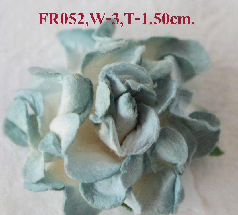 PS-RoseFR052