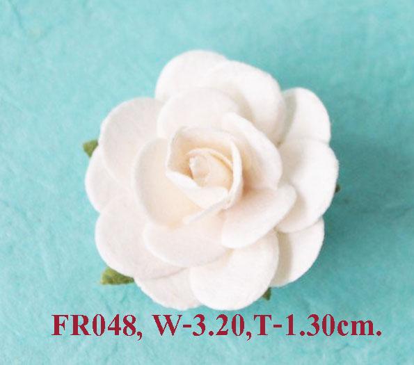 PS-RoseFR048