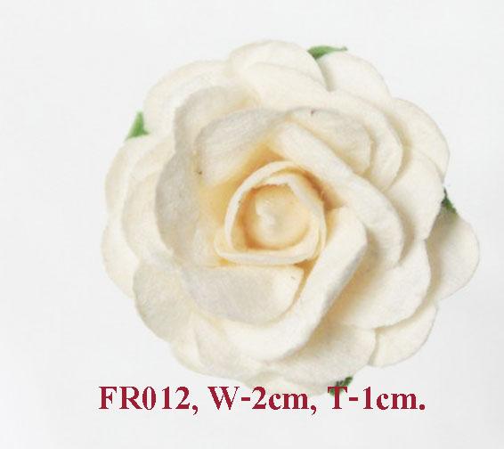 PS-RoseFR012
