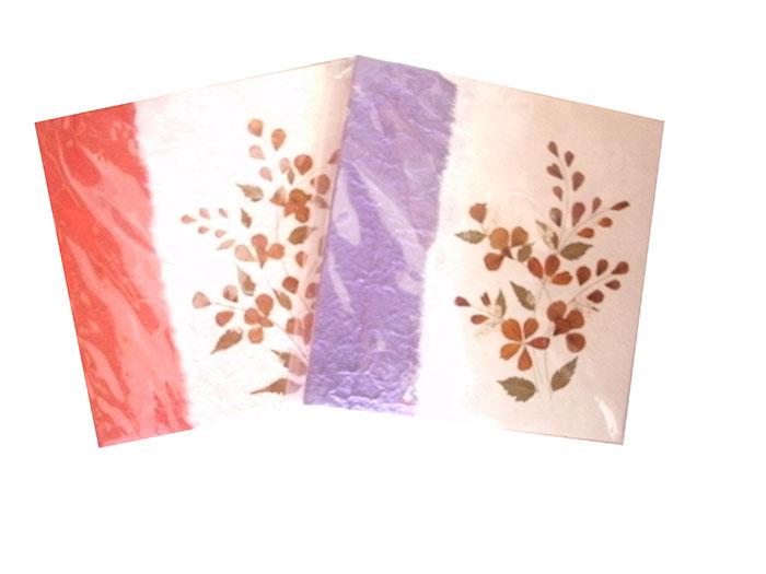 Mulberry paper pictureC0104-1