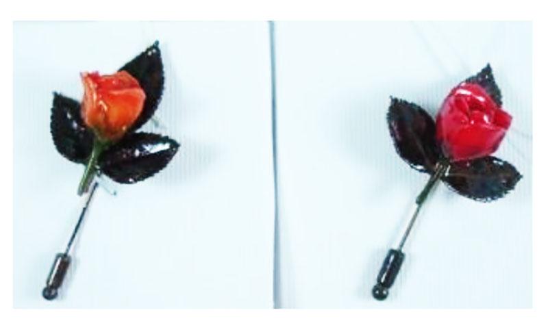 PS-OrchidPintie35