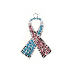 Wholesale cheap alloy Breast cancer Awareness Pink and Blue Ribbon  Necklace Jewelry set for women