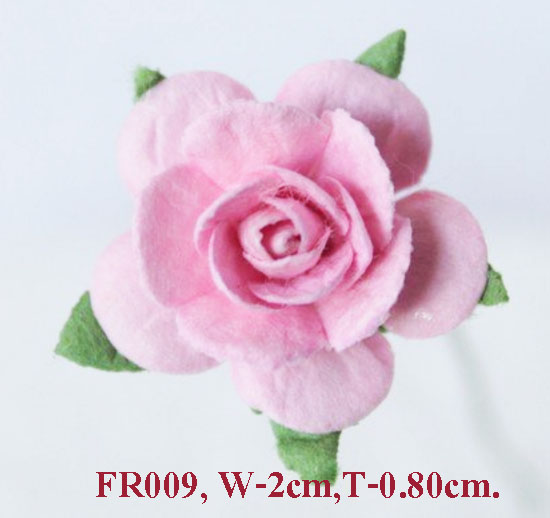 PS-RoseFR009