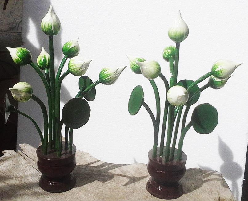 White wood lotus