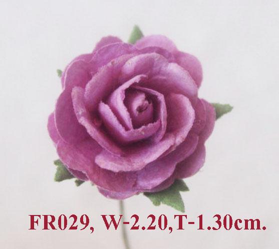 PS-RoseFR029