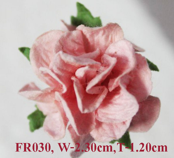 PS-RoseFR030