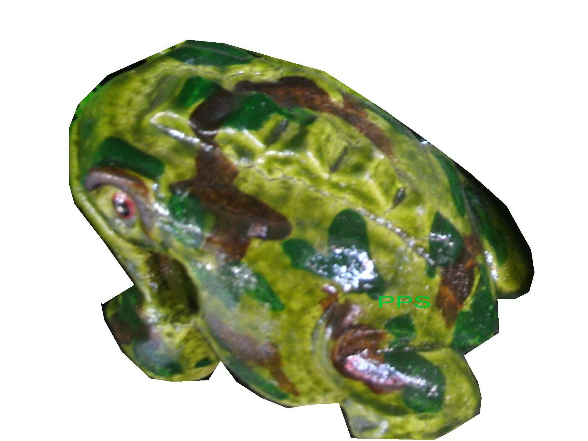 FrogFancyColorNo.71