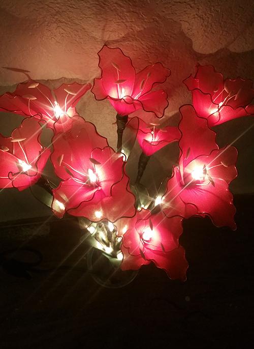 Flower Lights-4