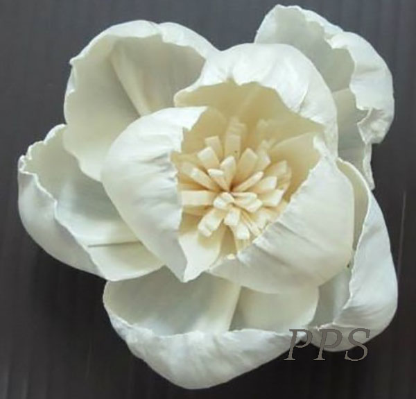Sola Flowerdiffuser 143 (21)